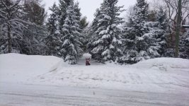 2020-02-10 snow clearing.jpg